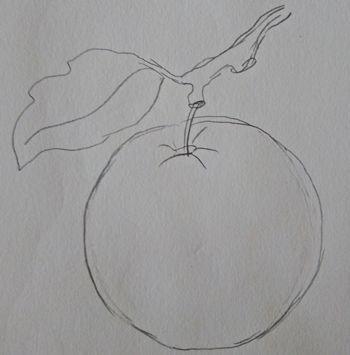 Rysunek jabłka