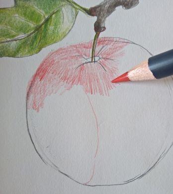 Jak narysować jabłko