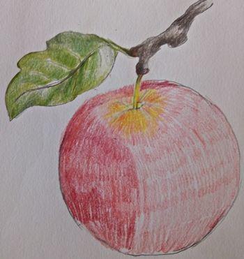 Jak realistycznie rysować jabłko