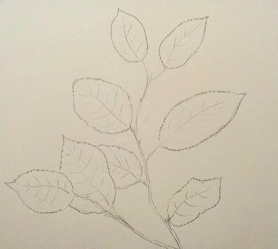 jak narysować liście ołówkiem