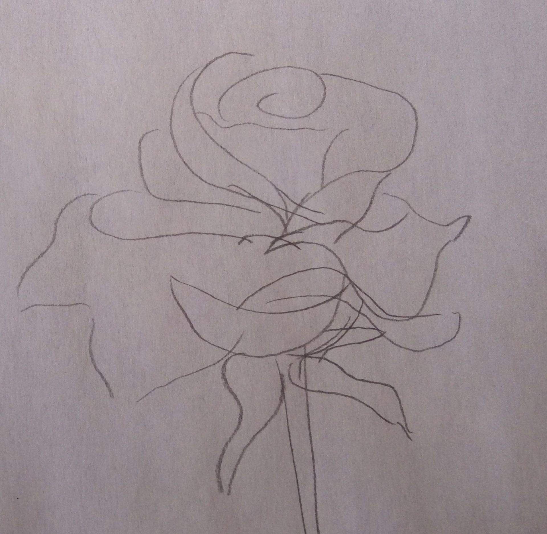 rysowanie kształtów róży