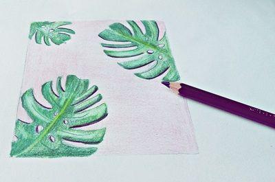 jak narysować liście monstery