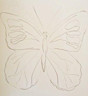 szkic motyla z rozłożonymi skrzydłami