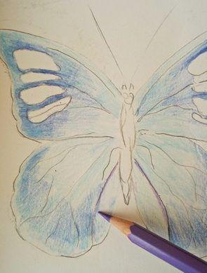 jak kolorować motyla