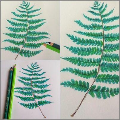 rysunek liści paproci kredkami