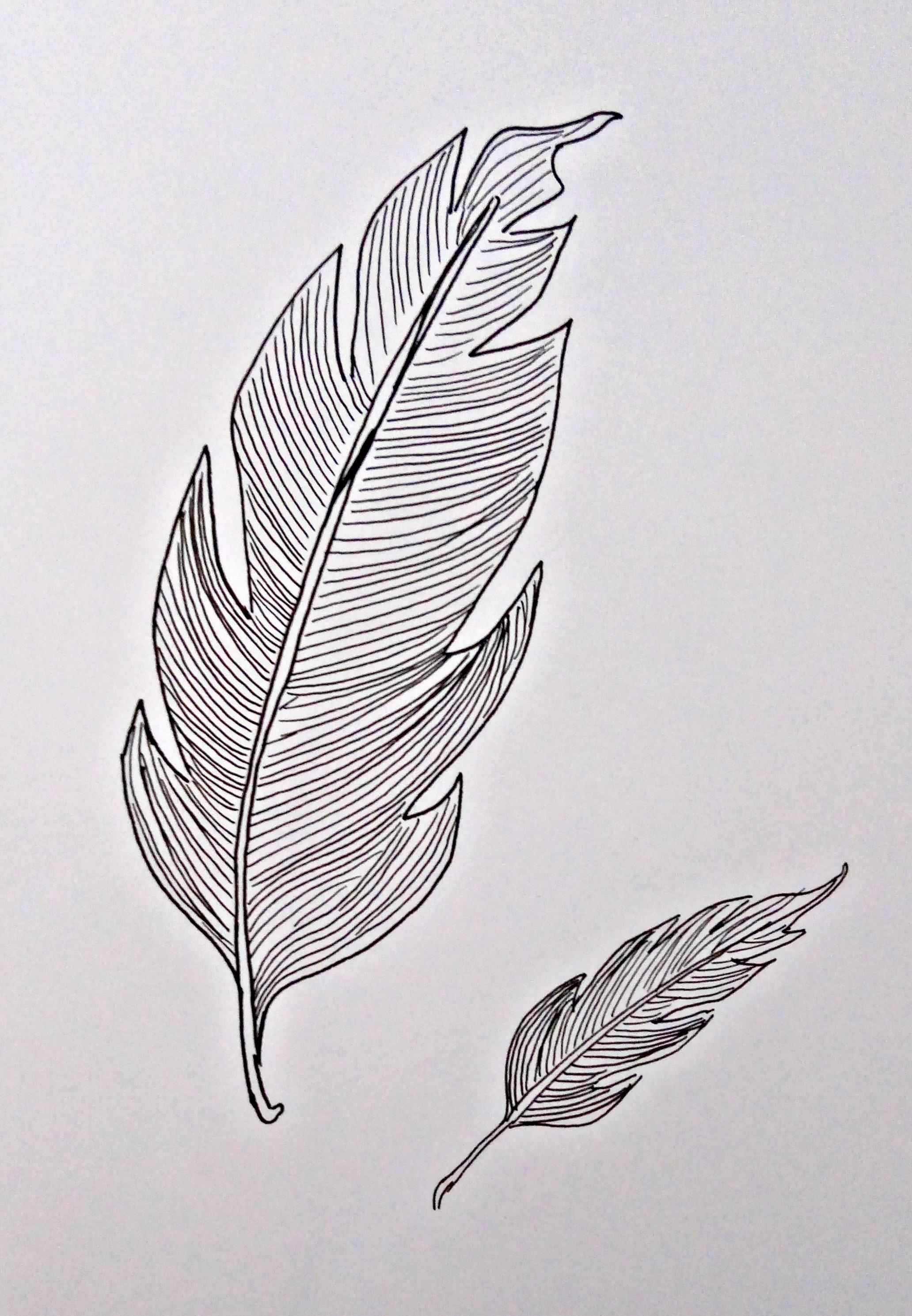 rysunek cienkopisami sakura pigma micron