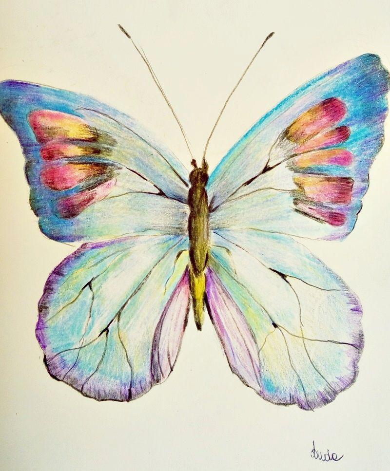 jak krok po kroku narysować motyla