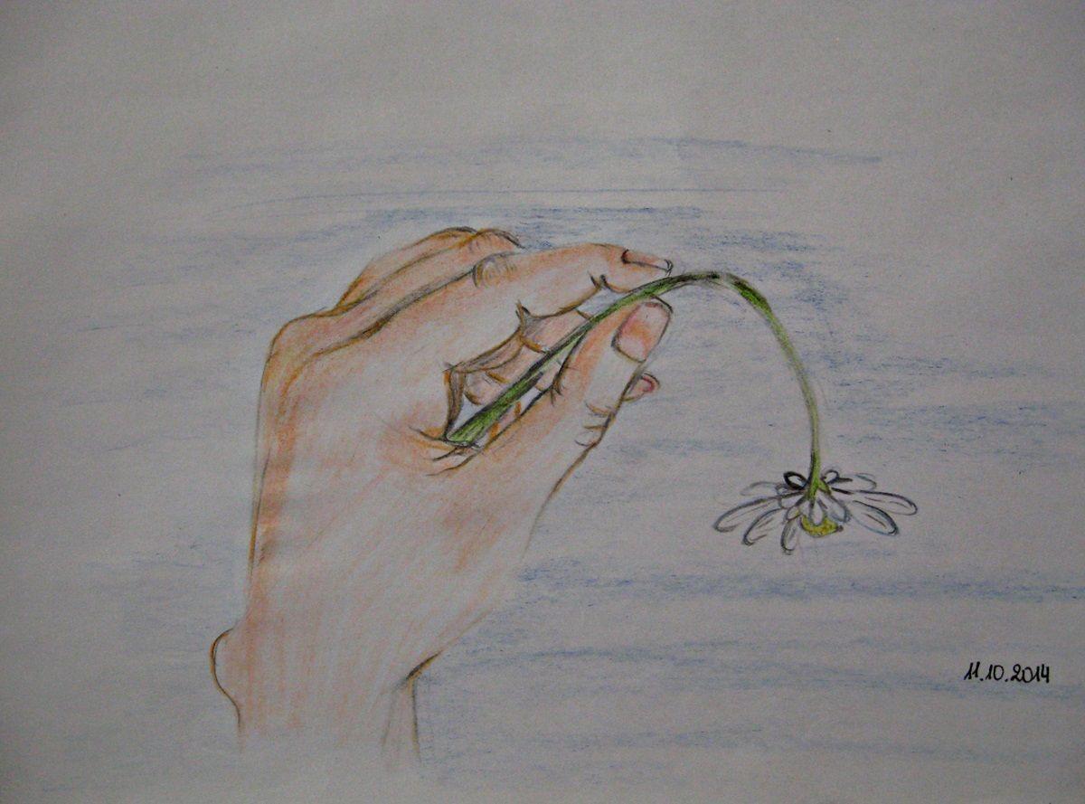 rysunek-kwiatka